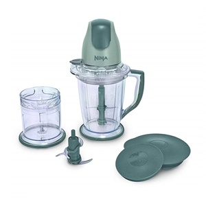Ninja 400-Watt Blender for Frozen Blending